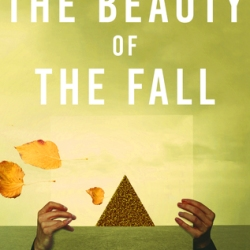 Book Review: The Beauty Of The Fall by Rich Marcello