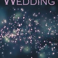 Book Review: We Are Going To A Wedding by Robert Davies Higgins